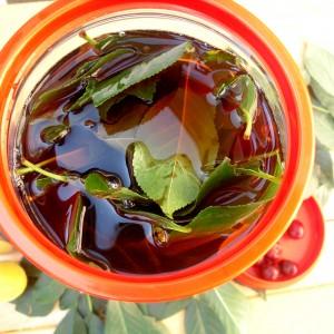 Ликер од црно вино и листови од вишни