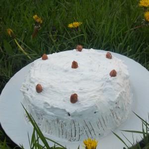 Ролат торта со слатка павлака