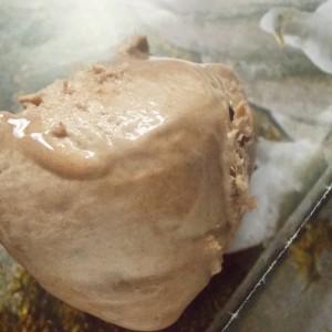 Сладолед од чоколада