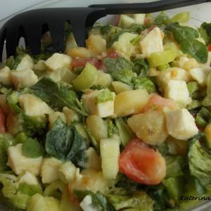 Мешана сезонска салата со моцарела