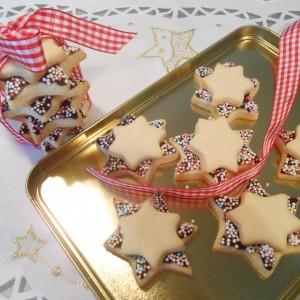 Шарени божиќни ѕвезди
