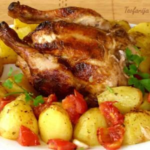 Бомбај пиле