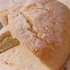 Брзо лебче