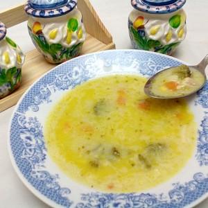 Зеленчукова супа со пилешко месо