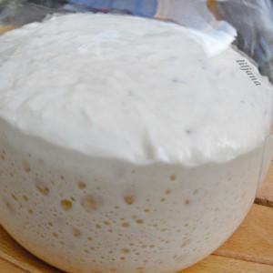Квас / Lievito madre / Sourdough starter