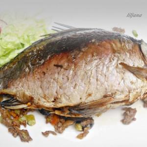 Полнет шаран (фил за полнење риба)
